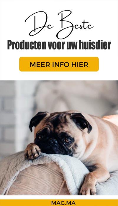 beste producten voor uw huisdier